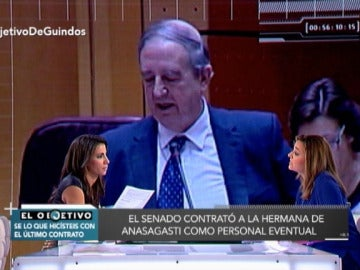 Iñaki Anasagasti contrató a su hermana como secretaria del PNV en el Senado
