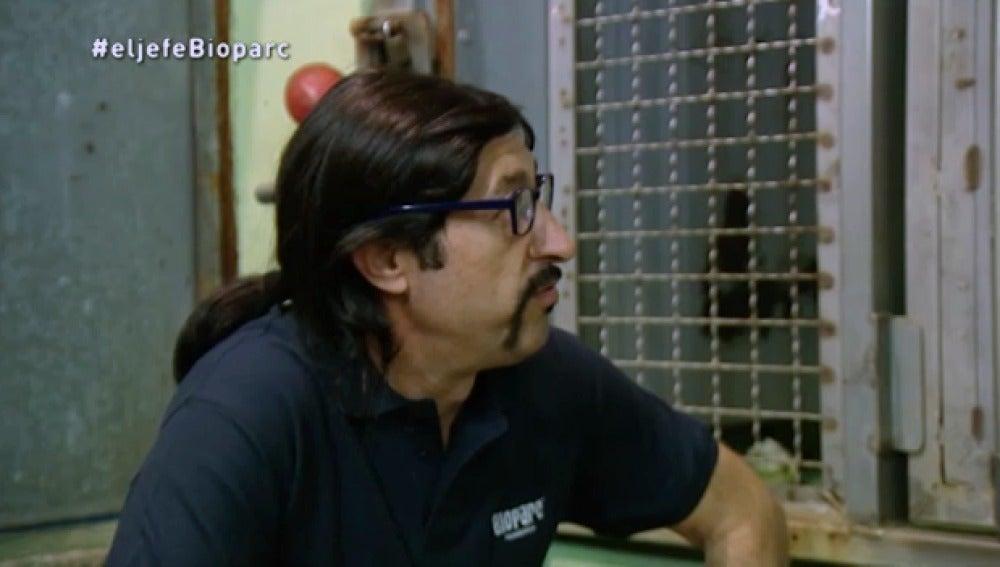 'El jefe infiltrado' se asusta con el gorila Ernie