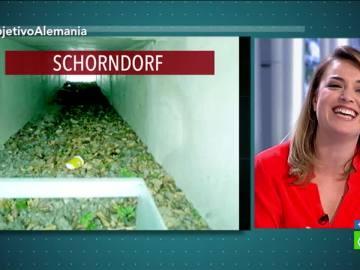 Construcción de unos túneles para ranas