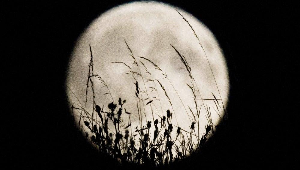 Espectacular luna llena (29-08-2015)
