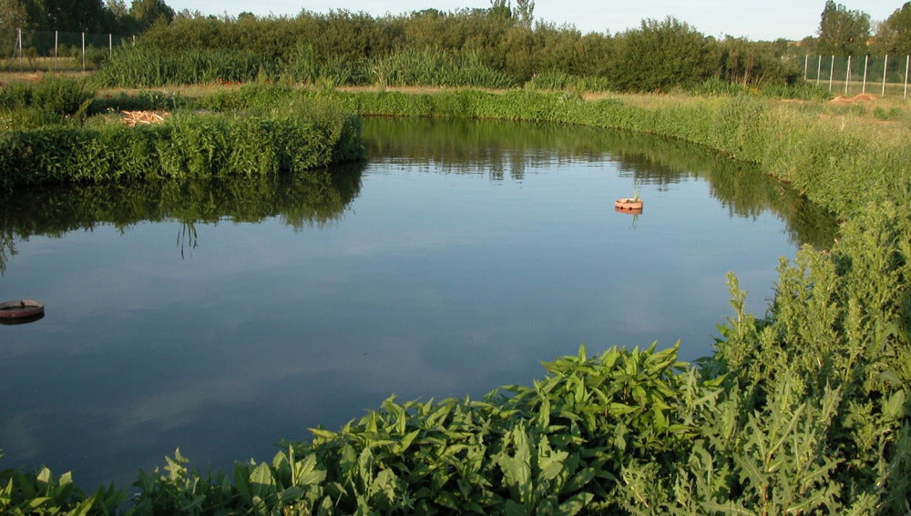 Imagen de archivo: aguas residuales.