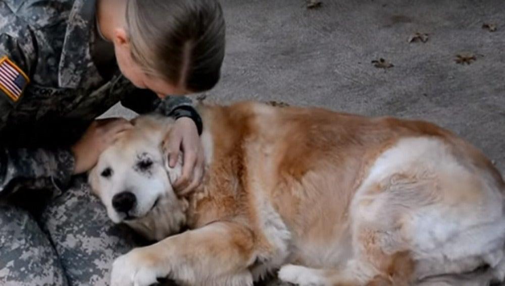 Imagen del emotivo reencuentro de la dueña con su perro