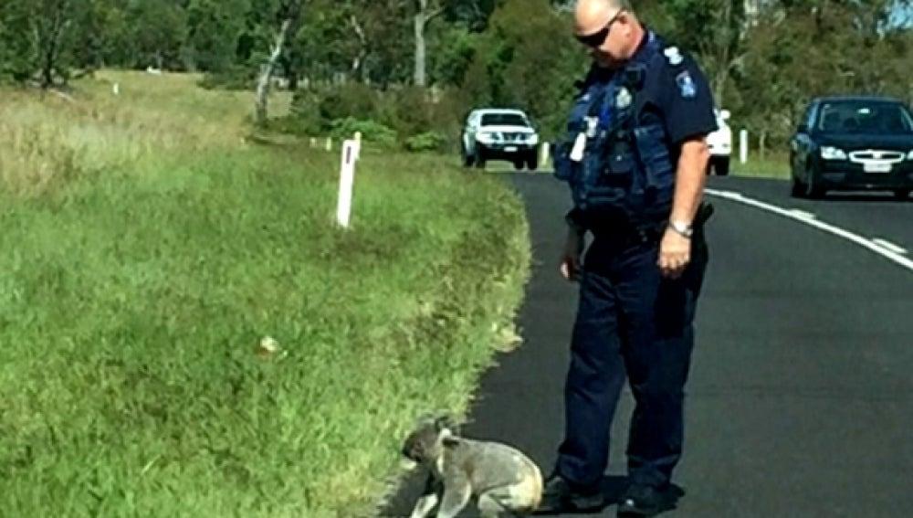 Imagen del policía con el koala