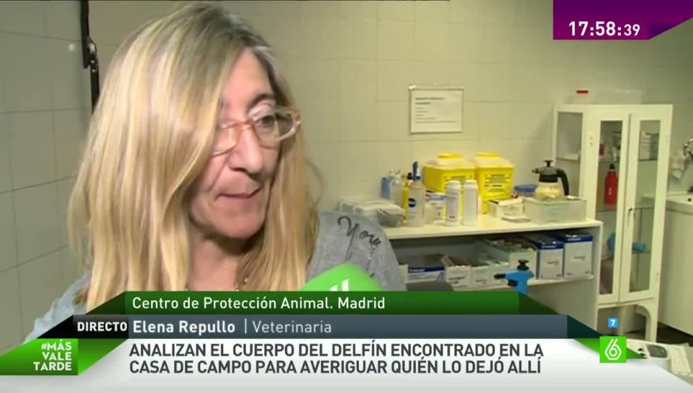 Elena Repullo en MVT