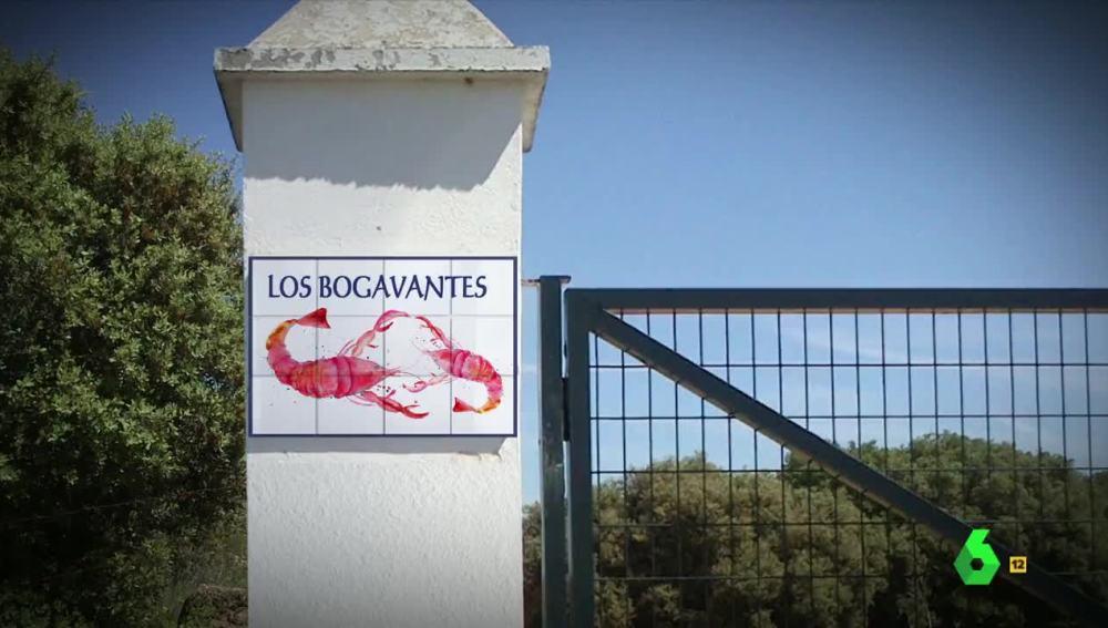 Los Bogavantes