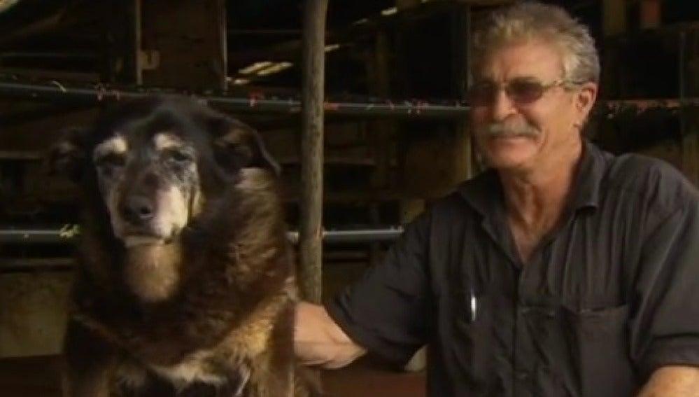 Maggie, el perro más longevo del mundo