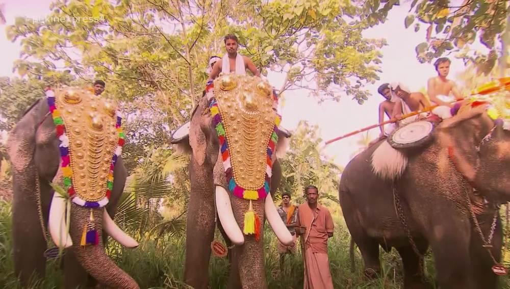 Los aventureros conocen la cultura de la India