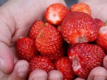 Spray para que la fruta dure más