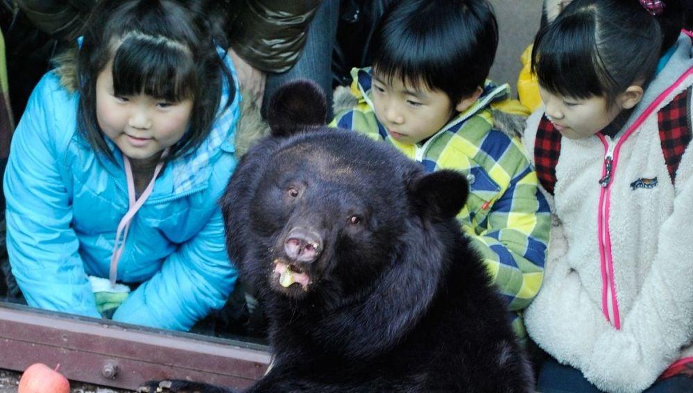 Un grupo de niños observan a un oso negro en un zoológico de Tokio