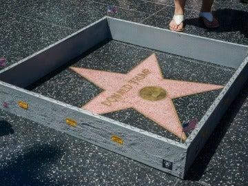 Muro alrededor de la estrella de Donald Trump