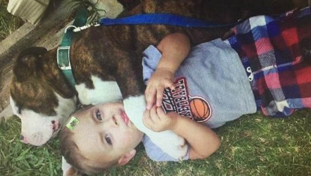 El niño junto a su perro.