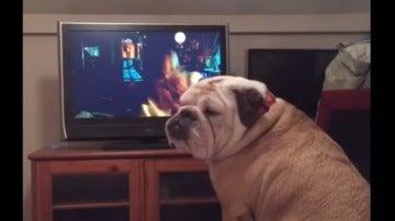 Khalessi mientras observa la televisión