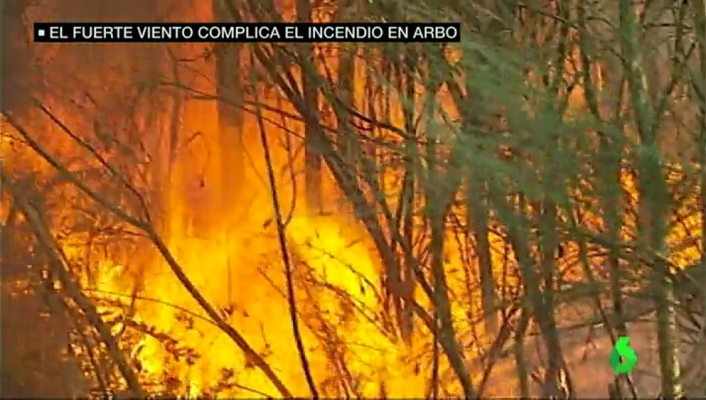 Frame 42.823219 de: incendio