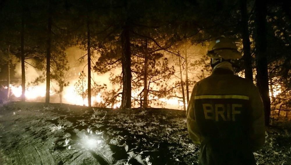 Un agente forestal trabajando en la extinción de un incendio