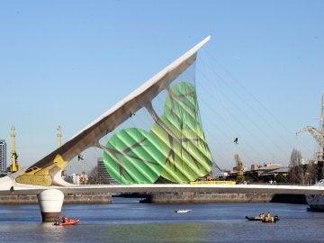 Greenpeace convierte un puente en un árbol caído
