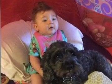 El bebé, junto a su perro salvador