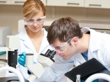 Científicos investigando