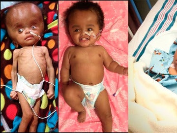 Imagen de Nika en el hospital