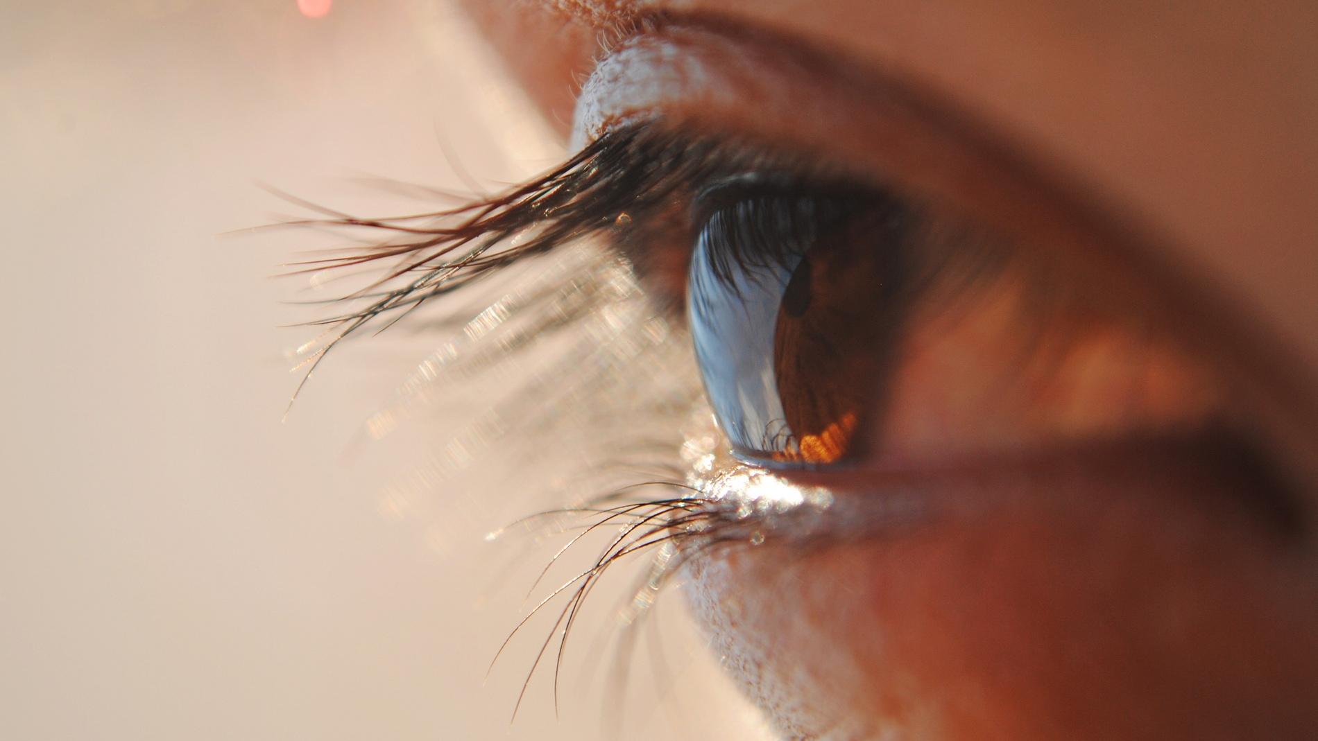 La mirada humana
