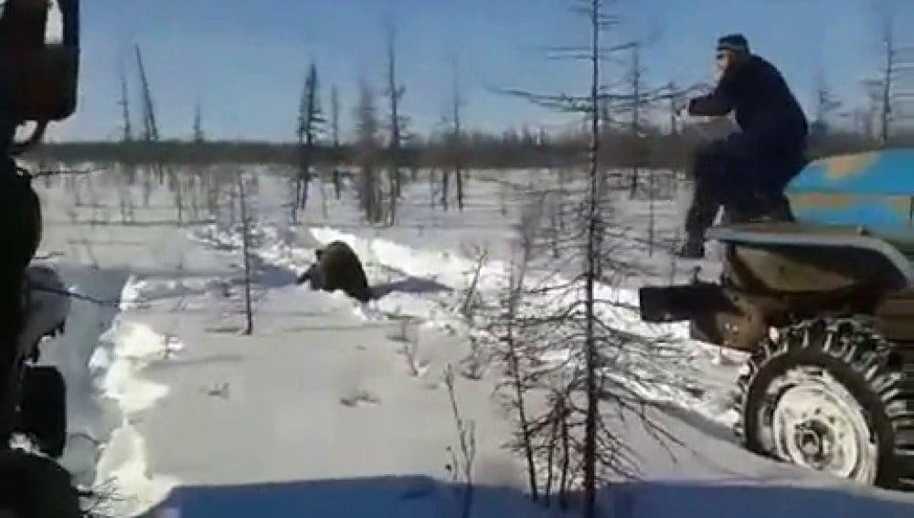 Imágenes de los autores de la muerte del oso
