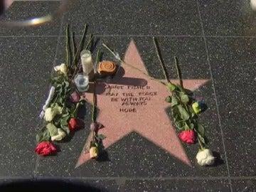 Frame 0.0 de: Fans de Carrie Fisher crean una estrella en su honor en el Paseo de la Fama de Hollywood