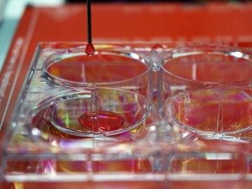 Bioimpresora 3D de piel humana