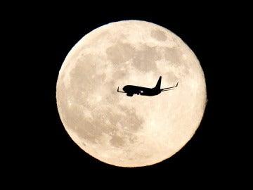 Los turistas espaciales podrán sobrevolar la Luna dentro de 5 años