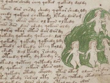 Una página del  Códice Voynich