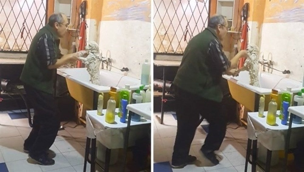 El dueño de la peluquería bailando con uno de los perros