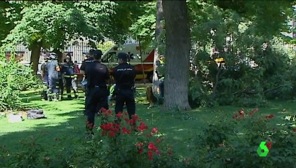 La Policía, en el parque del Retiro tras la caída de una rama de 400 kilos