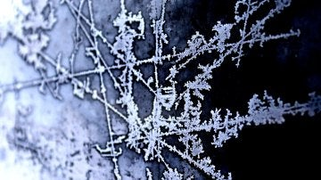 Congelación de objetos