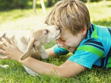 Un niño junto a un pequeño cachorro
