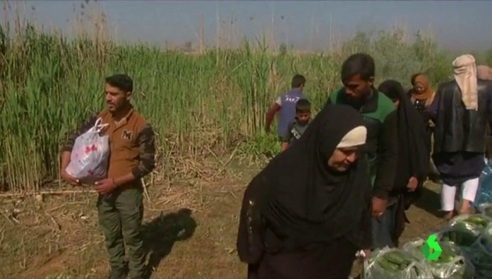 Consecuencias de las inundaciones en Mosul