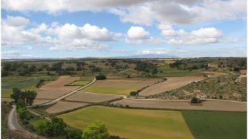 Paraje y Bodegas de 'El Plantío', en Atauta (Soria), Bien de Interés Cultural (BIC) con la categoría de Conjunto Etnológico. Fuente: UPM.