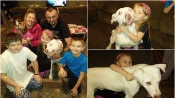 La familia vuelve a sonreír después de encontrar a su perro, que llevaba dos días desaparecido