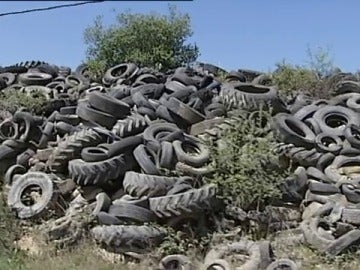 Cementerio ilegal de neumáticos