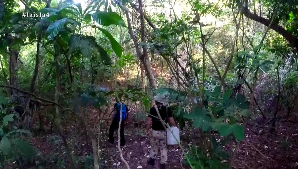 Los aventureros en La Isla
