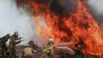 Los bomberos intentan apagar las llamas del incendio de Portugal