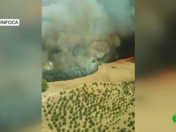 Andalucía tiene cuatro incendios forestales activos