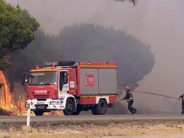 omberos intentan apagar un nuevo foco de fuego en la carretera que une las localidades de Mazagón y Matalascañas