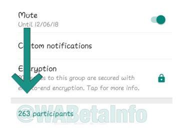 Ampliación grupos de Whatsapp