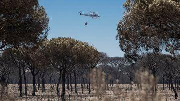 Un helicóptero del INFOCA sobrevuela un pinar completamente calcinado