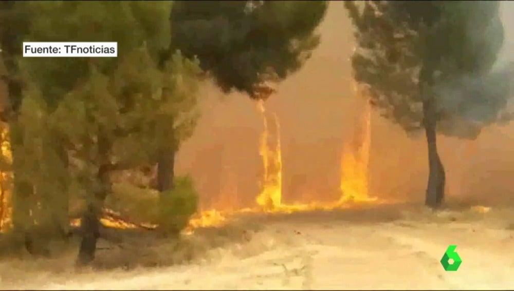 Incendio en Navalilla, Segovia