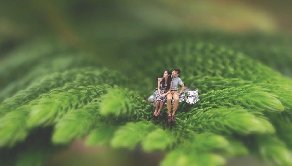 La joven pareja en miniatura sentados sobre una rama de un árbol