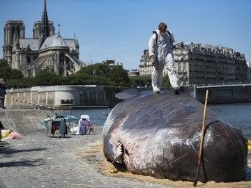 Los artistas junto a la escultura del cachalote varado en París