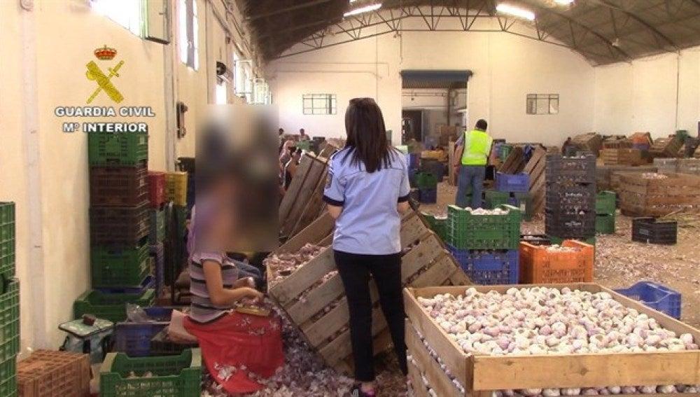 Los agentes de la Guardia Civil auxiliando a los trabajadores explotados