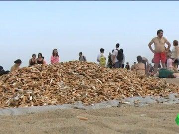 Voluntarios recogen en un día 80.000 colillas en Barcelona