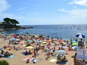 """La """"realimentación"""" de las playas perjudica la costa mediterránea"""