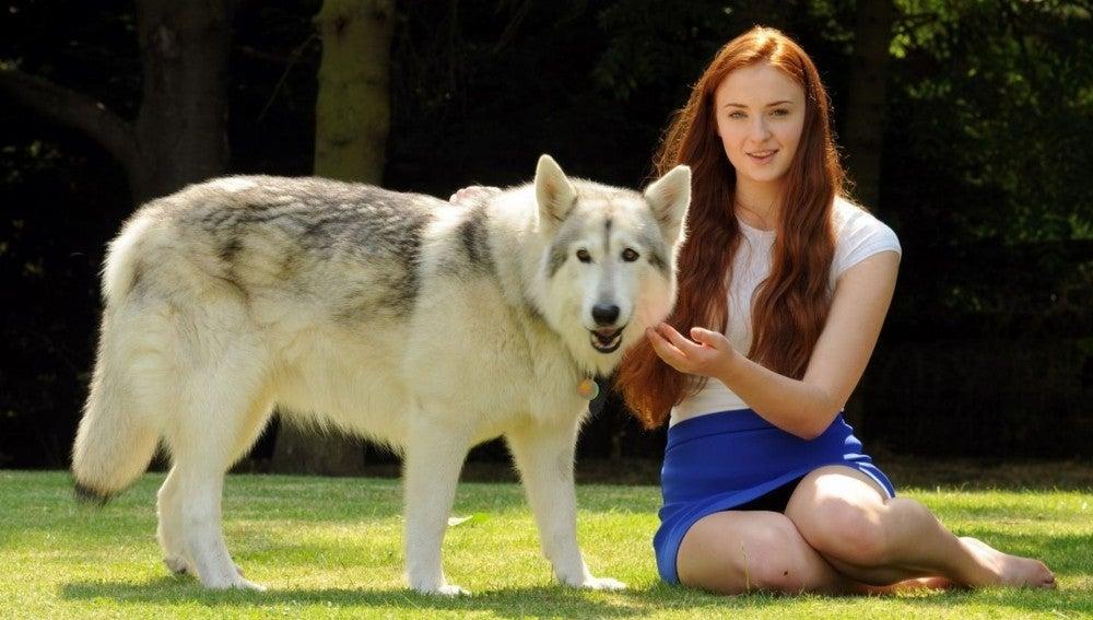 Sophie Turne, actriz que encarna en la ficción a Sansa Stark decidió quedarse con la perra que hizo de su loba Dama