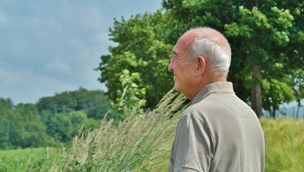 Un jubilado contempla el campo